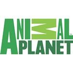 Animal Planet Logo [EPS-PDF]
