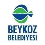 Beykoz Belediyesi Vektörel Logosu [EPS-PDF]